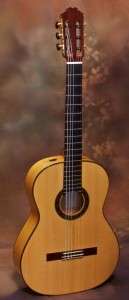 Gil Carnal Flamenco Guitar