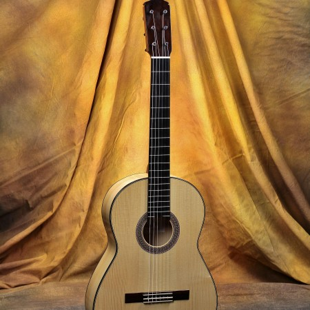 Darren Hippner Flamenco Guitar #768 - Marcelo Barbero