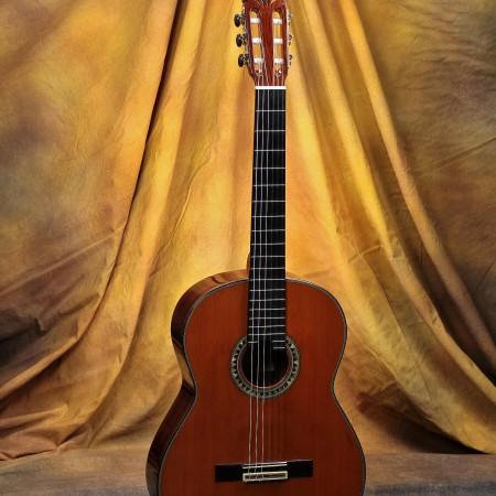 Manuel Adalid Anniversario Classical Guitar #3 Cedar w/Madagascar RW
