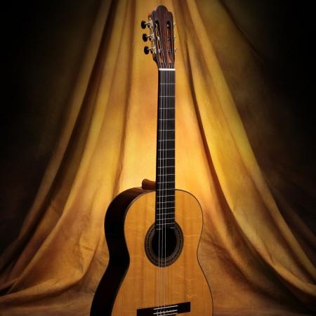 Daryl Perry Classical Guitar #188