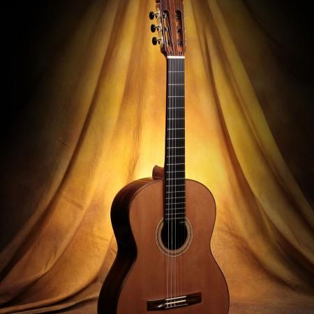 Richard Prenkert Classical Guitar #356