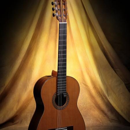 Kenny Hill Classical Guitar #3869 Signature 650 Cedar