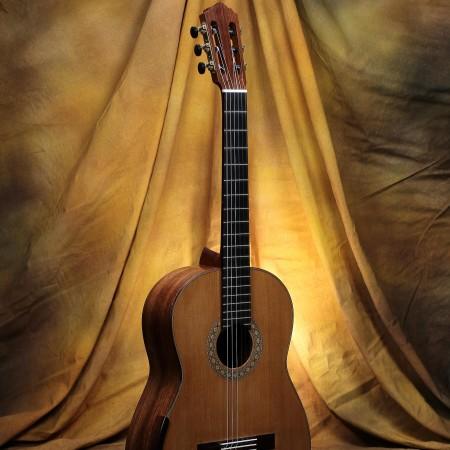 2009 Ross Gutmeier Classical Guitar Double Top Spruce w/Honduran RW