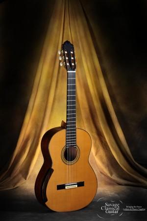 Manuel Adalid Classical Guitar - La Catedral I